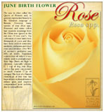 Rose Birth June
