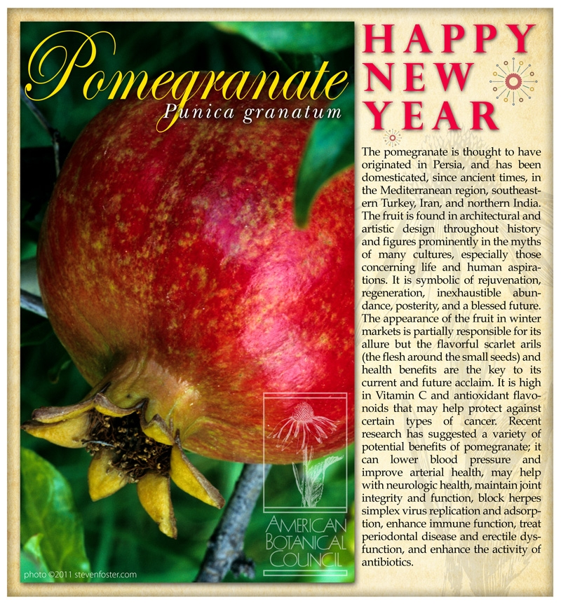 Pomegranate New Year