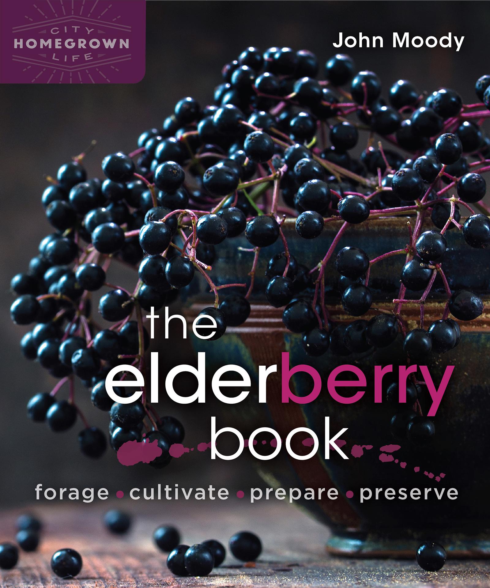 elderberry book cover