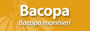 Bacopa banner