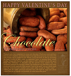 Chocolate for Valentine's Day