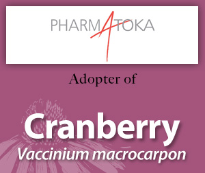 Cranberry banner AAH