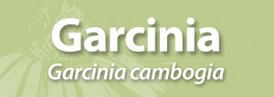 Garcinia_for_AAH_page