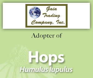 Hops_for_Adoption_Page