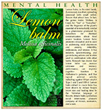 Lemon Balm Mental HealthSM
