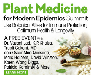 Plant Medicine Summit