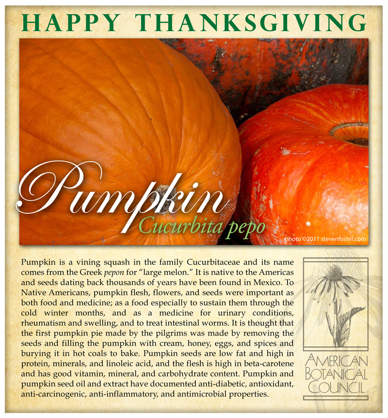 Pumpkin Thanksgiving
