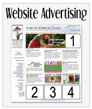 Advertising Websites