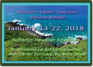hawaii-journey18-fw-300x216.png