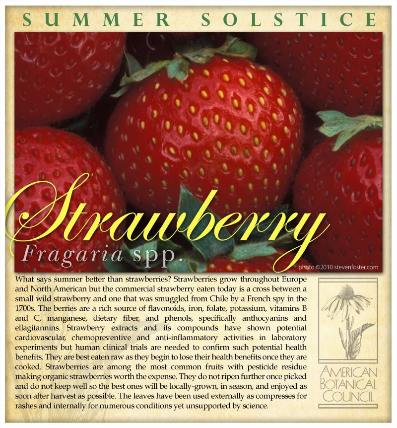Strawberry Summer Solstice2